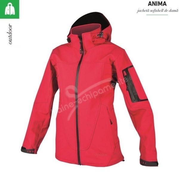 Jacheta rosie de dama, Anima